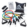 Resistance Band Set with Door Anchor, Ankle Strap, Exercise Chart