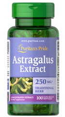 Astragalus Extract 1000 mg*