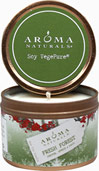 Evergreen Holiday Candle