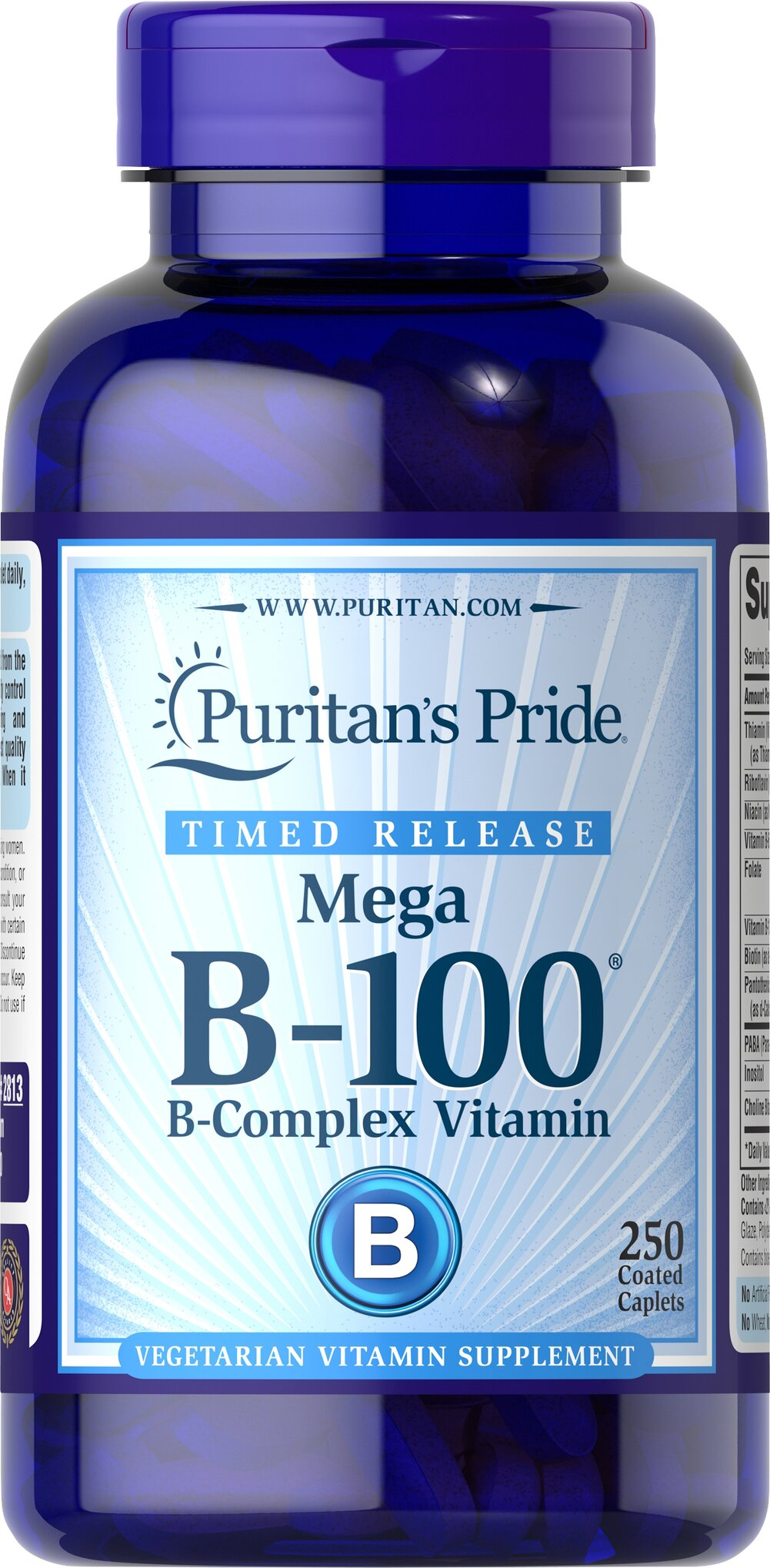 Vitamin B-100® Complex Timed Release <p>Each nutrient in the Vitamin B-100® Complex performs a unique role in maintaining proper metabolic functioning and is essential for well being.** When taken together in a complex formula, the B Vitamins help to maintain the health of the nervous system, skin, eyes and hair.** This product is specially formulated to provide a gradual release of vitamins over a prolonged period of time.</p>  250 Tablets 100 mg $66.49