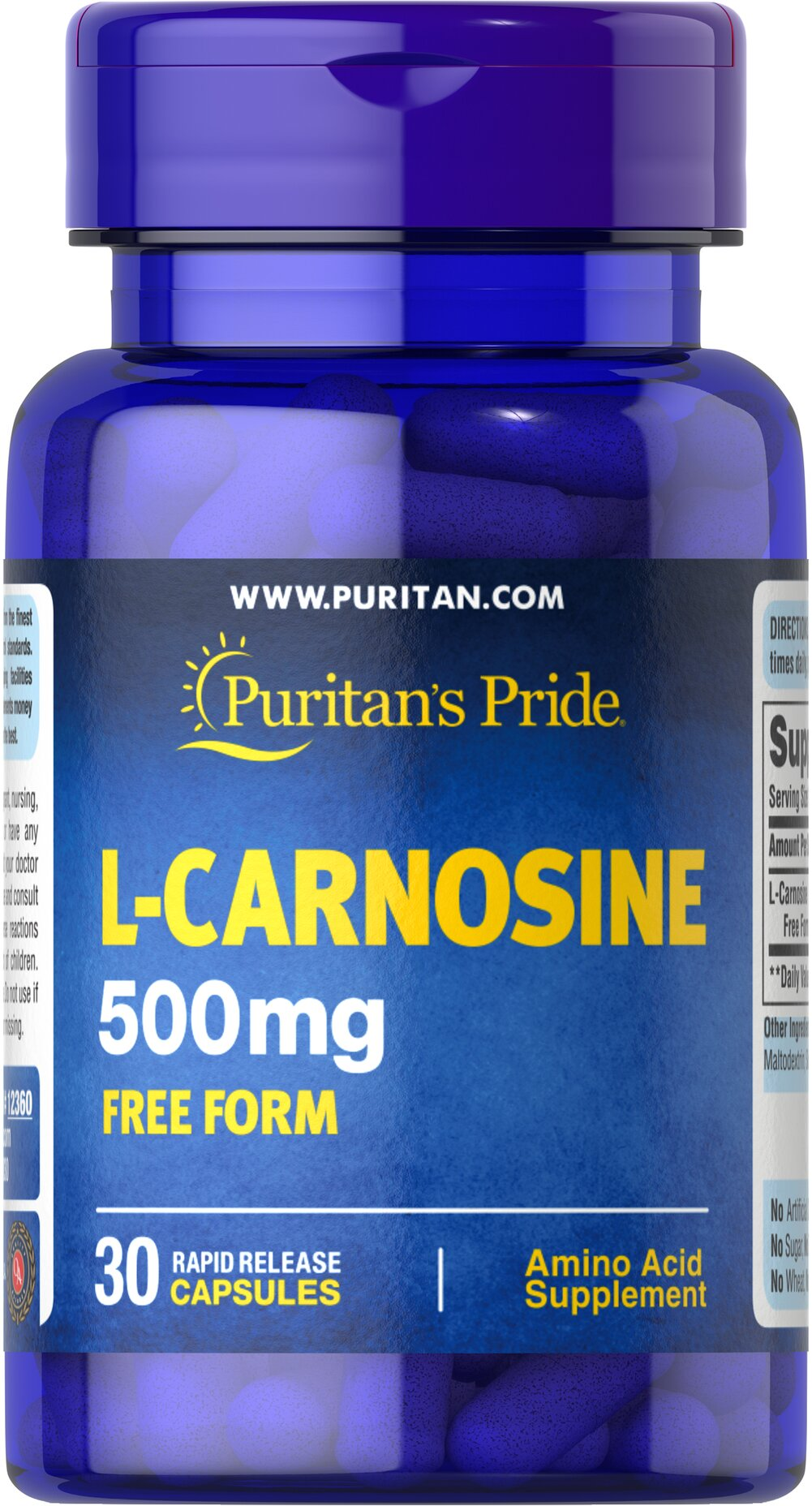 L-Carnosine 500 mg <p>L-Carnosine, one of the most abundant water-soluble nitrogen compounds found in muscle, supports cognitive and nervous system health.** Carnosine can have a positive effect on the brain's learning process.** In addition, L-Carnosine is also involved in the chelation of some heavy metals.**</p><p>Supports Cognitive Health**</p> 30 Capsules 500 mg $22.99