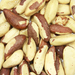 Raw Brazil Nuts <p>Brazil Nuts are a three-sided, creamy colored nut. </p>Brazil Nuts are high in protein, calcium, iron, zinc, as well as a natural  source of selenium.  8 oz Container  $12.99