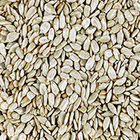 Organic Shelled Sunflower Seeds <p>These Organic Sunflower Seeds are a delicious ingredient for salads and cereals, or just to snack on.</p><p></p> 9 oz Container  $6.99