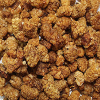 Organic Raw Mulberries <p><strong>From the Manufacturer:</strong></p><p>Certified Organic Mulberries Superfruit have a dried fig-like <strong></strong>flavor and chewy crunch. Mulberries are an excellent snack with a similar texture to raspberries. <br /></p> 4 oz Bag  $7.19