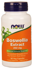Boswellia Extract 250 mg plus Turmeric <p><strong>From the Manufacturer:</strong></p><ul><li>Standardized Boswellia Extract</li><li>Plus Turmeric Root Extract</li></ul><p>NOW Boswellia Extract is a standardized extract of the herb <em>Boswellia serrata</em>, also known as Frankincense. Boswellia's properties have been long known to herbalists and have been prized since antiquity.</p><p>Manufactured by N