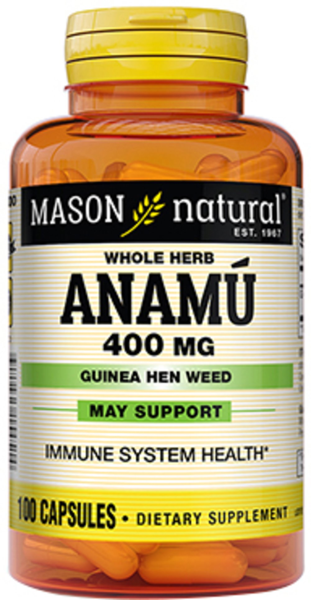 Anamu 400 mg <p><b>From the Manufacturer's Label:</b></p> <p> Anamu 400 mg is manufactured by Mason Naturals.</p> 100 Capsules 400 mg $5.99