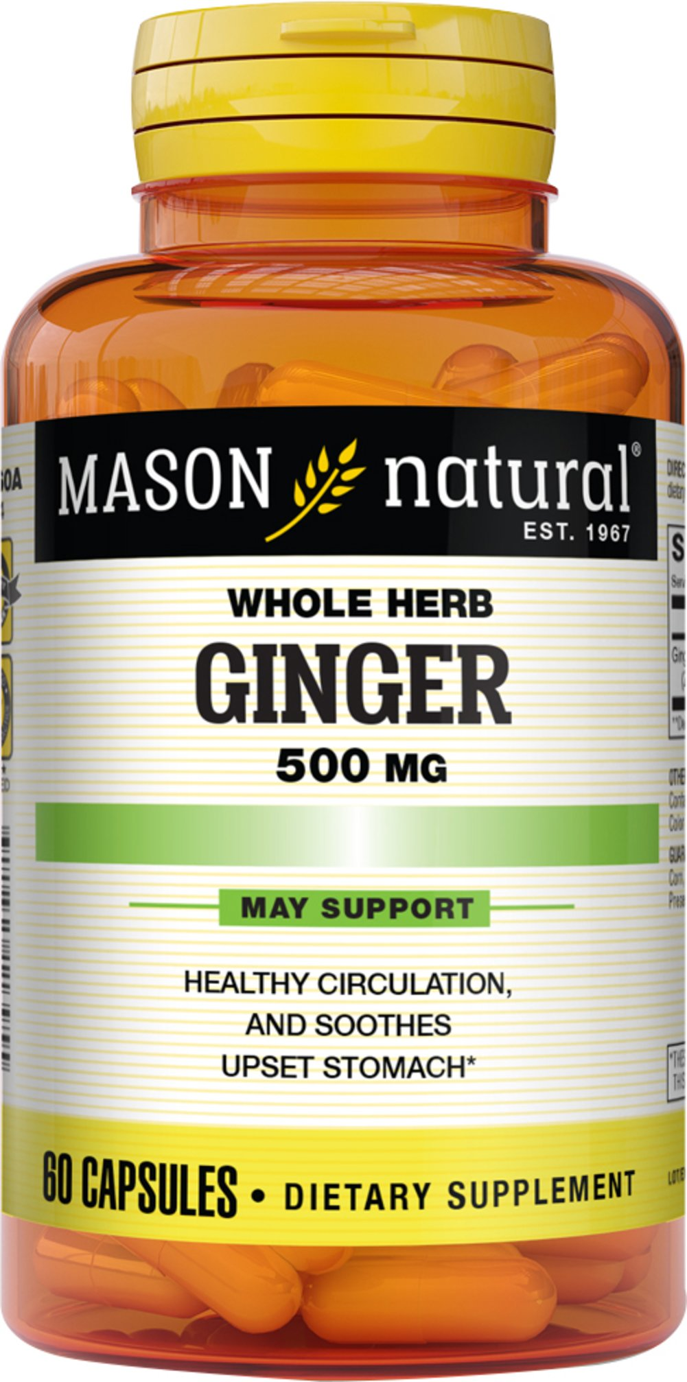 Ginger 500 mg <p><strong>From the Manufacturer's label:</strong></p><ul><li>Herbal Supplement</li><li>Promotes Healthy Circulation**</li><li>Soothes upset stomach & is Popular with Travelers**</li></ul><p>Manufactured for Mason Vitamins, Inc.</p><p></p><p></p><p><strong></strong></p><p></p> 60 Capsules 500 mg $3.99